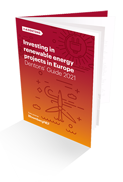 EU Renewables Workshop 2021 Brochure cover