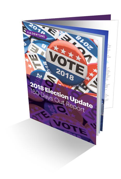 2018 Election Update brochure image