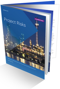 Global Project Risks