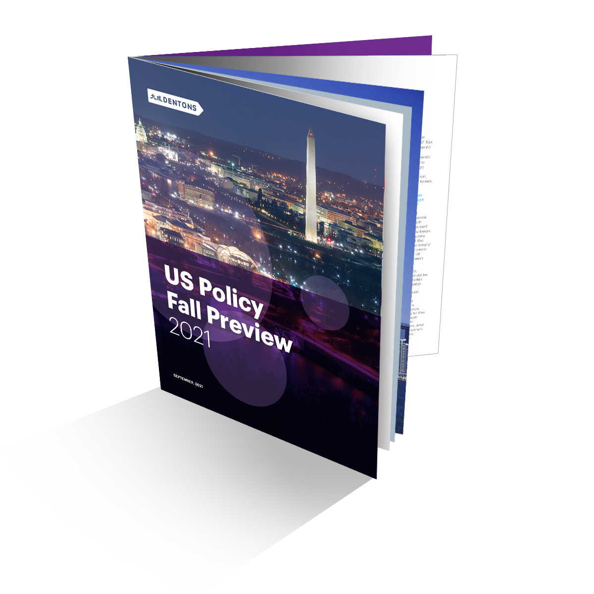 Download US Policy Fall Preview 2021