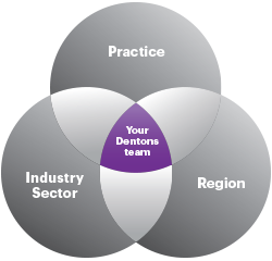 Your Dentons Team